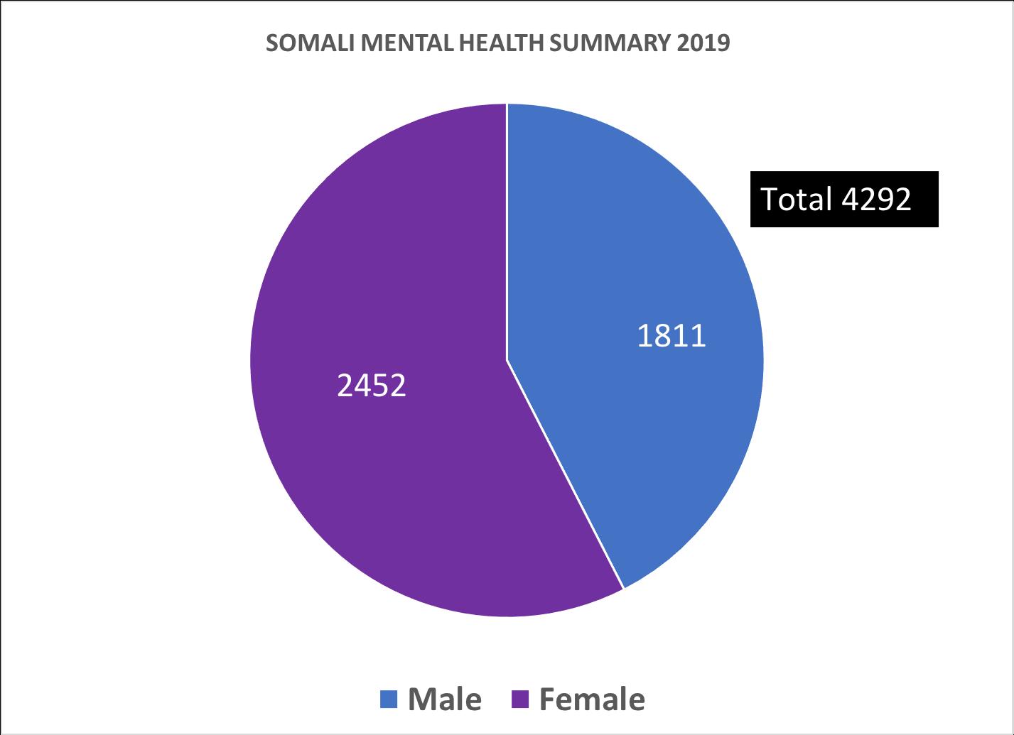2019_SMHF_SUMMARY_REPORT